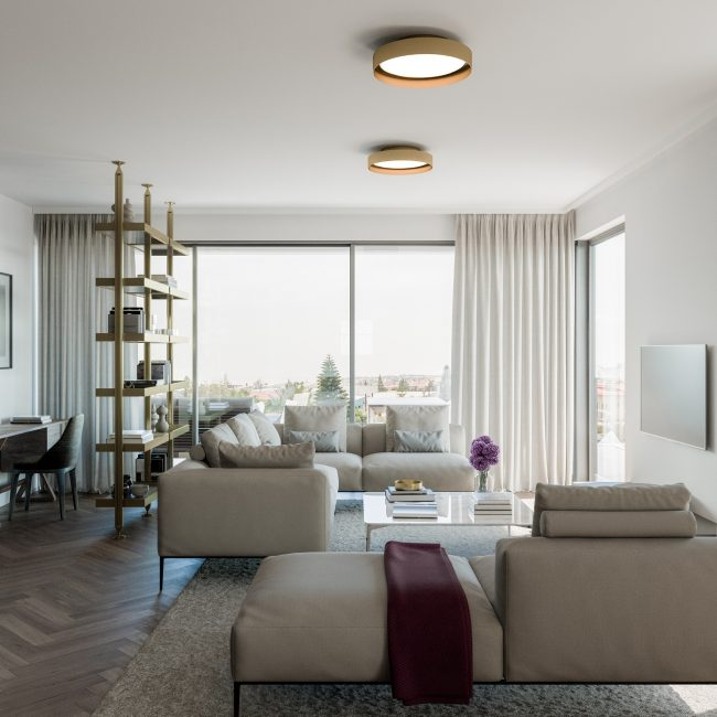 Aster | Penthouse / Conceptual View