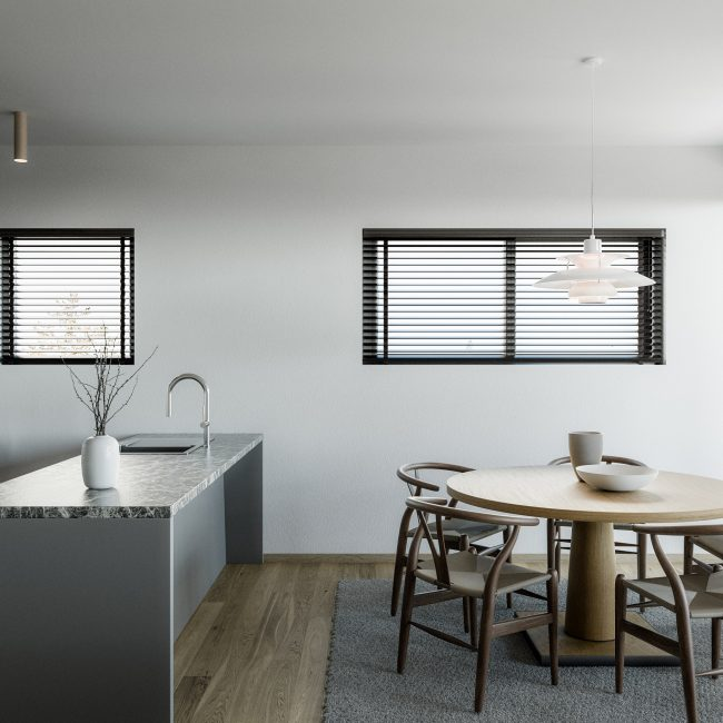 Aster | Typical Apartment / Conceptual View