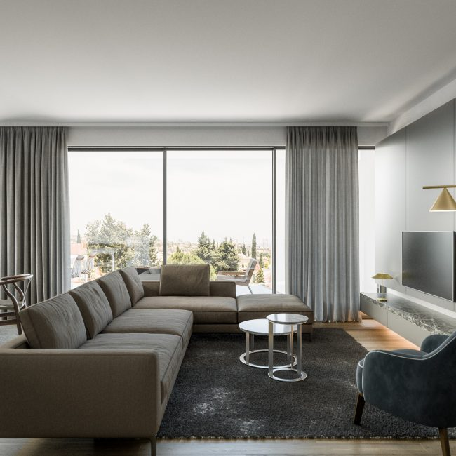 Aster | Two bedroom apartment / Conceptual View